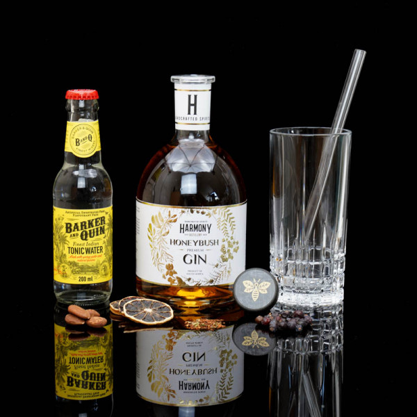 ginvasion-harmony-honeybush-gin-blog-deutsch-titelbild