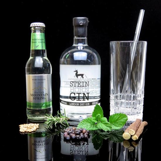 ginvasion-steinhorn-gin-blog-deutsch-titelbild-550x550
