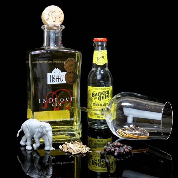 ginvasion-ibhu-indlovu-gin-blog-deutsch-titelbild