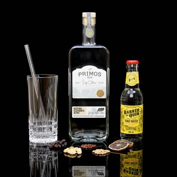 ginvasion-primos-crisp-citron-gin-blog-deutsch-titelbild